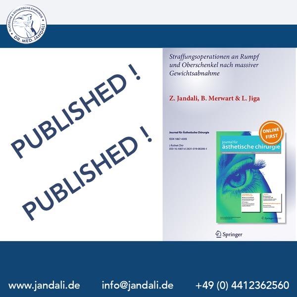 Spirngerjpunal published